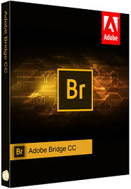 Adobe Bridge CC 2020 Crack + License Key Free Download